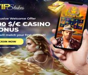VIP Stakes Online Casino Review